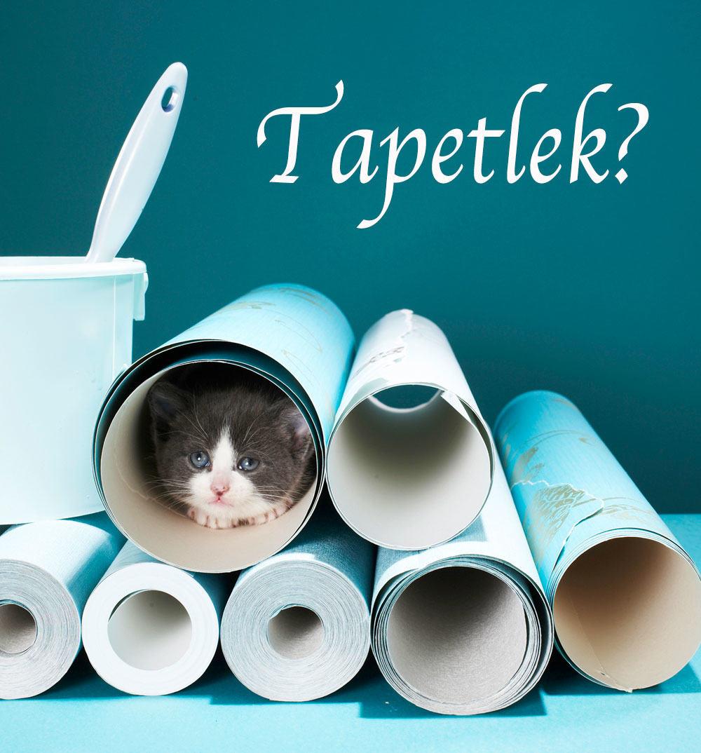 Hur tapetserar man? - Gör det själv DIY, Hemmafix, Tapet & textil ...