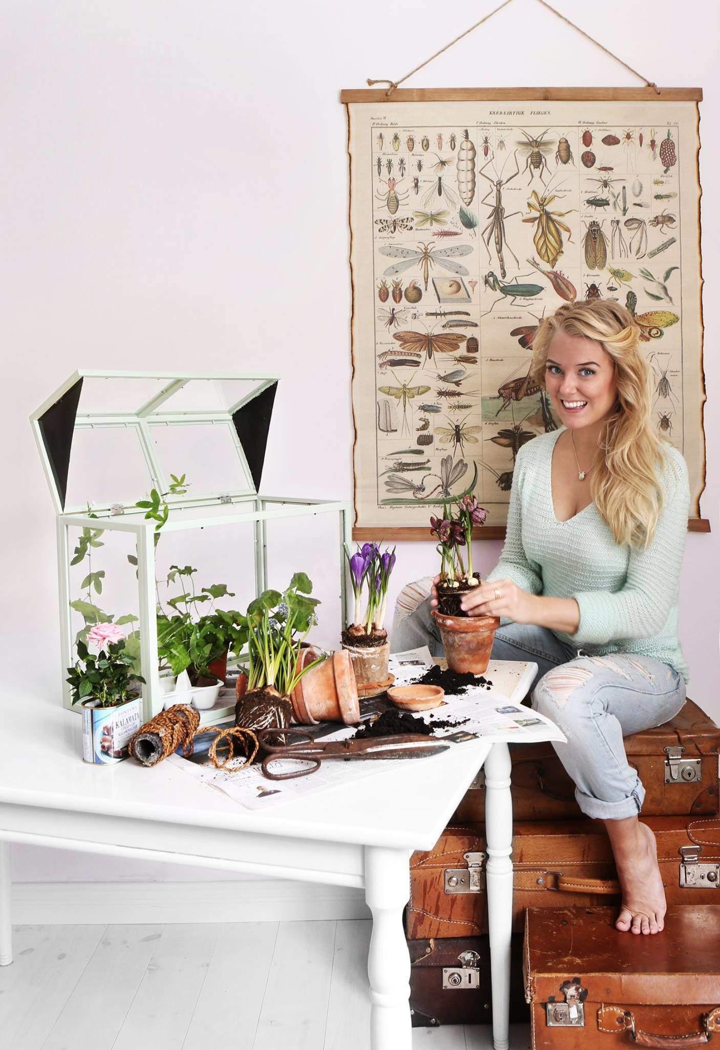 Växthus av tavelramar, av Monica Karlstein, Hemmafixbloggen.se