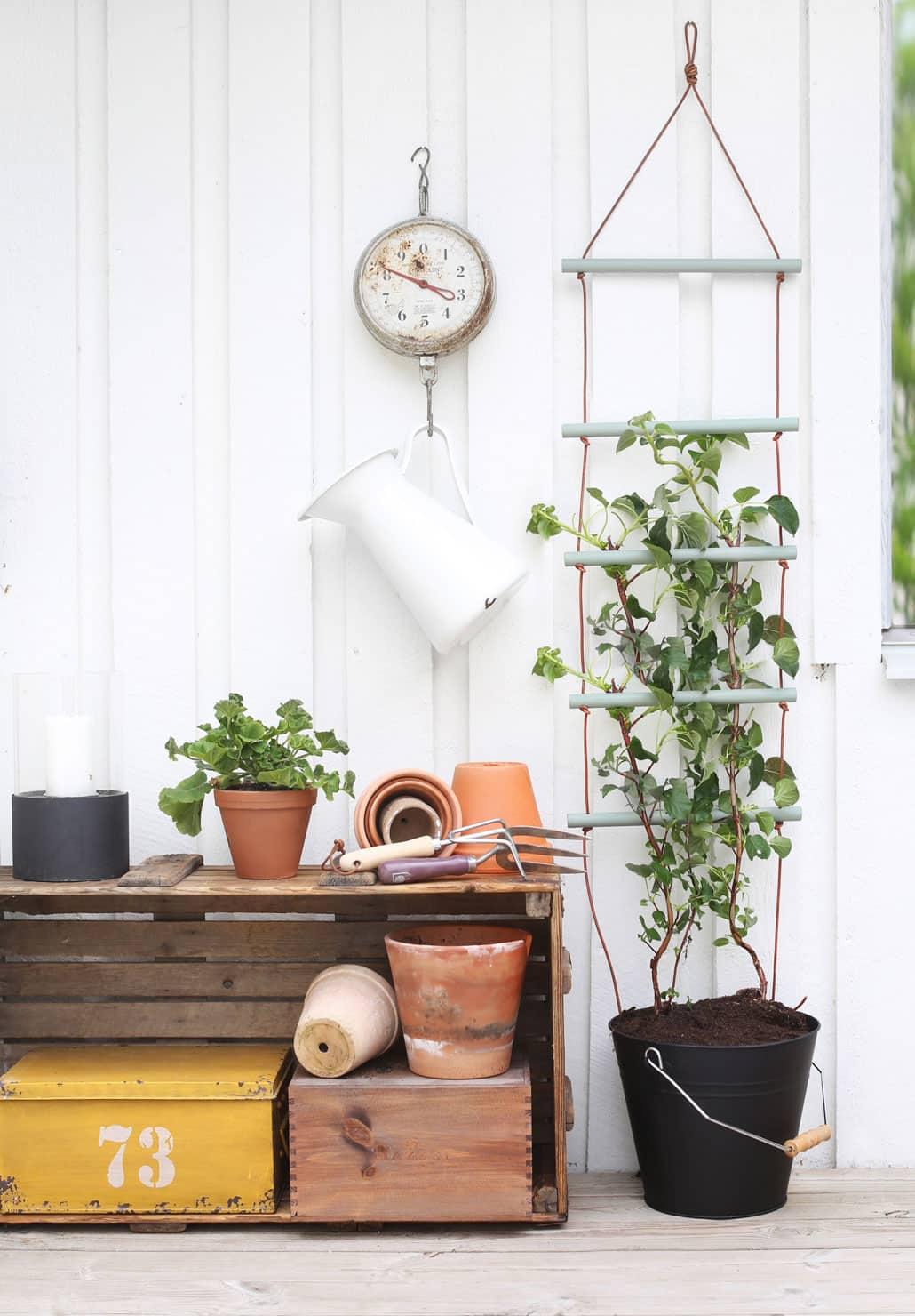 DIY: Fixa en enkel växtspaljé / klätterstöd av rundstav