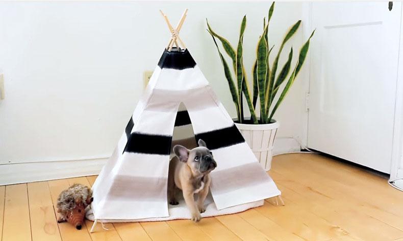 tält för hundar eller barnen
