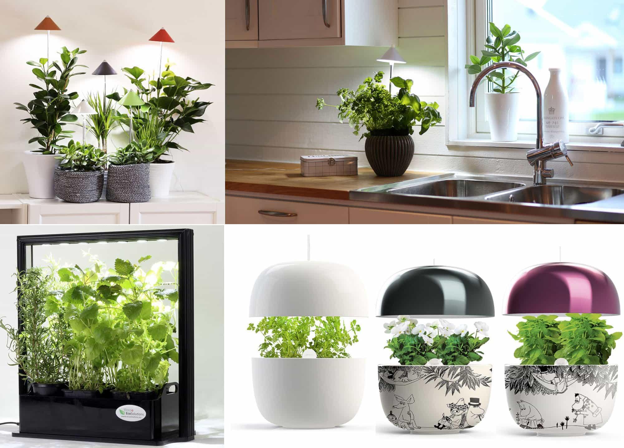 lampa för växter inomhus