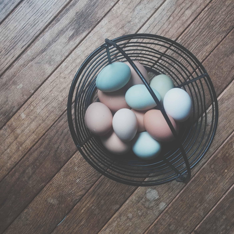 Glad påsk – njut av våren med nära och kära