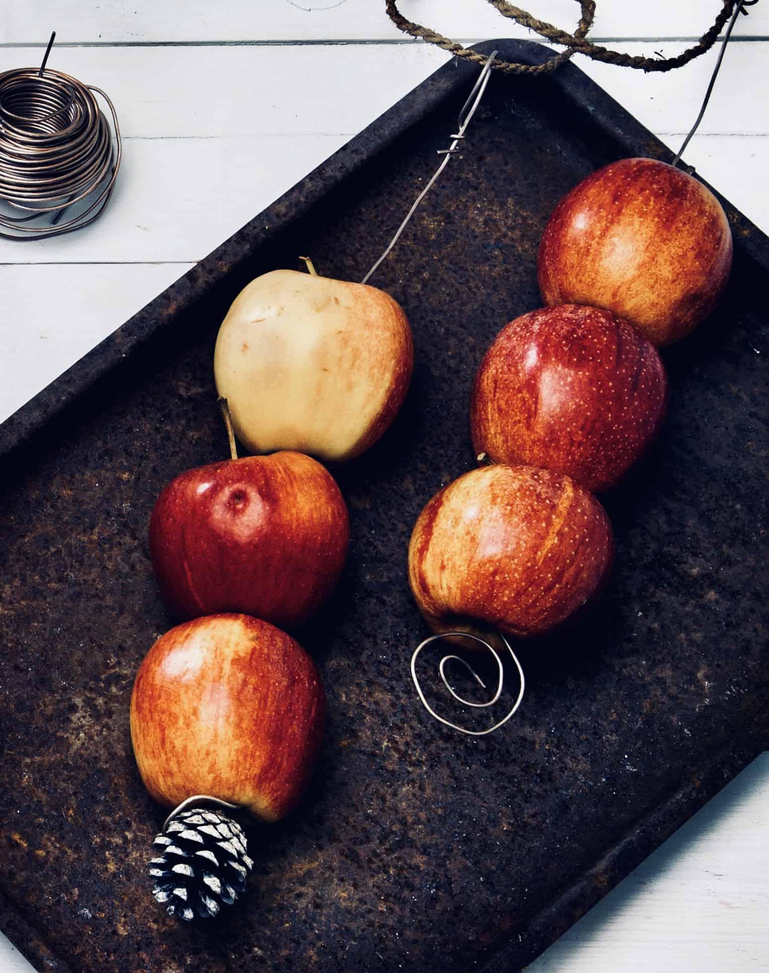 Fixa höstens enklaste fågelmat: Häng upp äpplen på tråd i träden