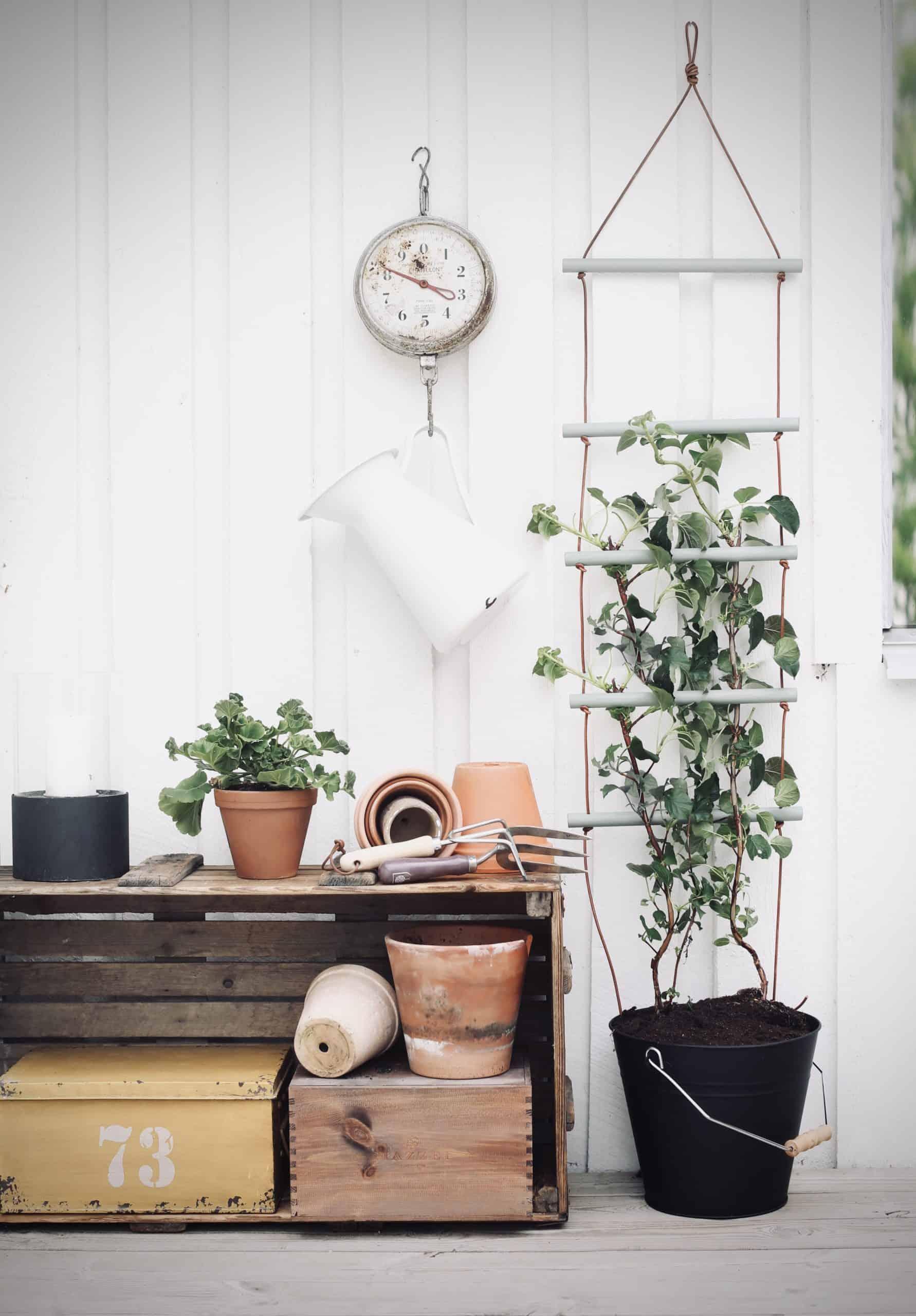 Fixa enkla klätterstödet av rundstav till dina växter